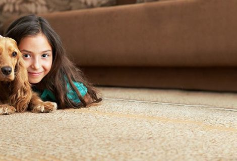 Stains on your carpet aren't something you want to see come back.