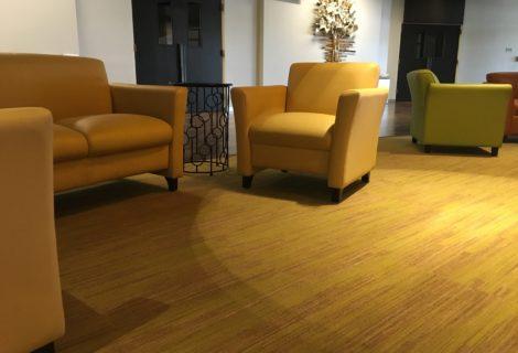 Wool's Carpet Advantages