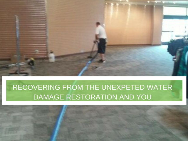 Carpet Cleaning Service│Best Carpet Cleaning in Arizona Water Damage / water extration Phoenix, Arizona